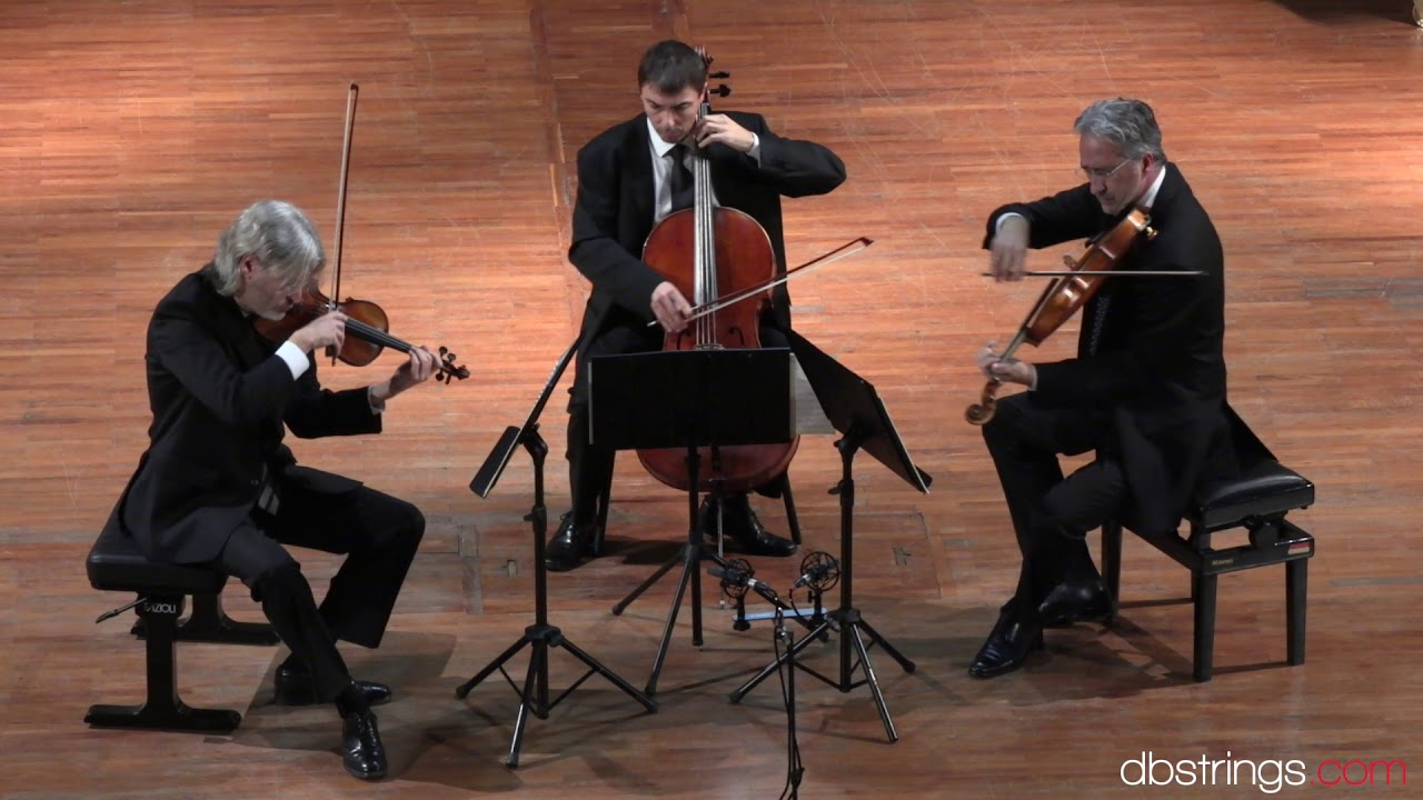 Boccherini Trio in re maggiore op. 14 n. 4 G. 98